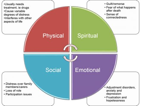 Essay on holistic care